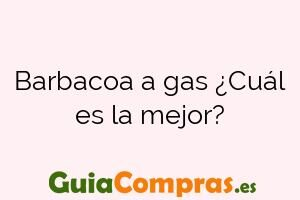 Barbacoa a gas ¿Cuál es la mejor?