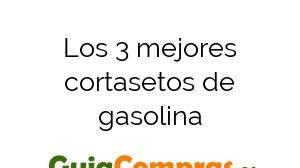 Los 3 mejores cortasetos de gasolina