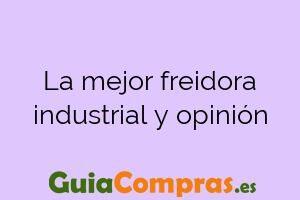 La mejor freidora industrial y opinión