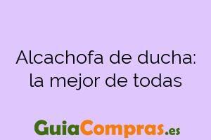 Alcachofa de ducha: la mejor de todas